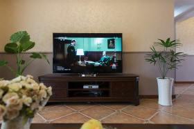 温馨田园客厅电视背景墙设计