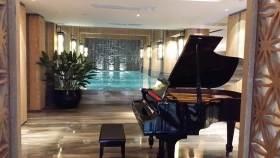 2016欧式别墅古典钢琴布置欣赏