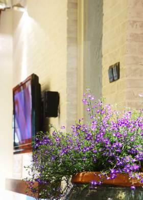 田园休闲电视背景墙装修效果图