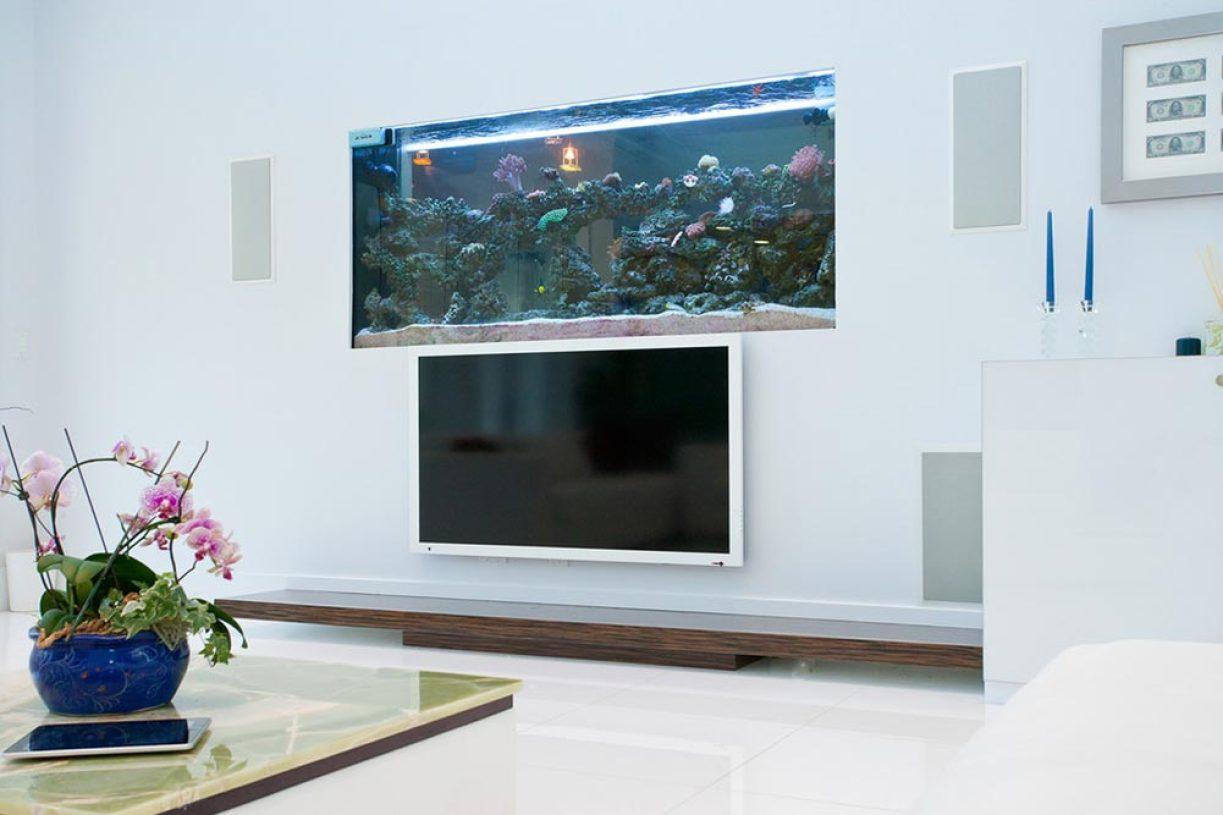 浪漫现代客厅鱼缸设计电视背景墙设计-兔狗装修效果图