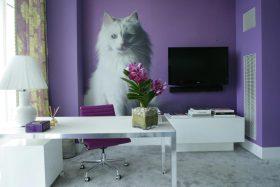 浪漫少女紫色简欧风书房设计装修