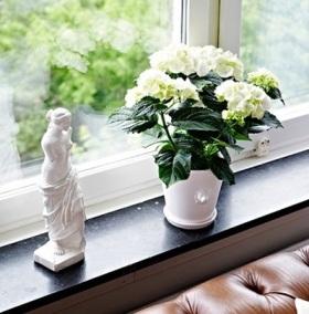 简约精致风格窗台装饰设计欣赏