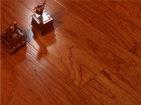 书香门第地板图片