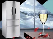 TCL冰箱图片