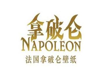 拿破仑壁纸