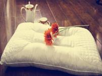 枕头的图片