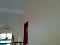 液体墙纸图片