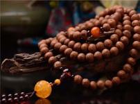 菩提子手链的图片