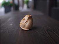 金蟾的图片