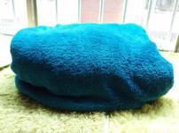 珊瑚绒毛毯图片