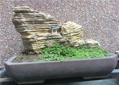 上水石盆景