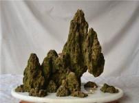 上水石盆景的图片
