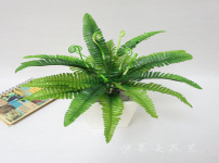 仿真植物图片