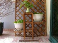 室内花架的图片