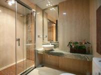卫生间淋浴房图片