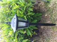 LED草坪灯图片