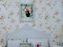 海斯顿壁纸图片