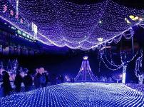 led彩灯图片