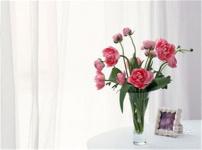 鲜花摆放风水的图片