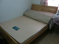 棕榈床垫的相关图片