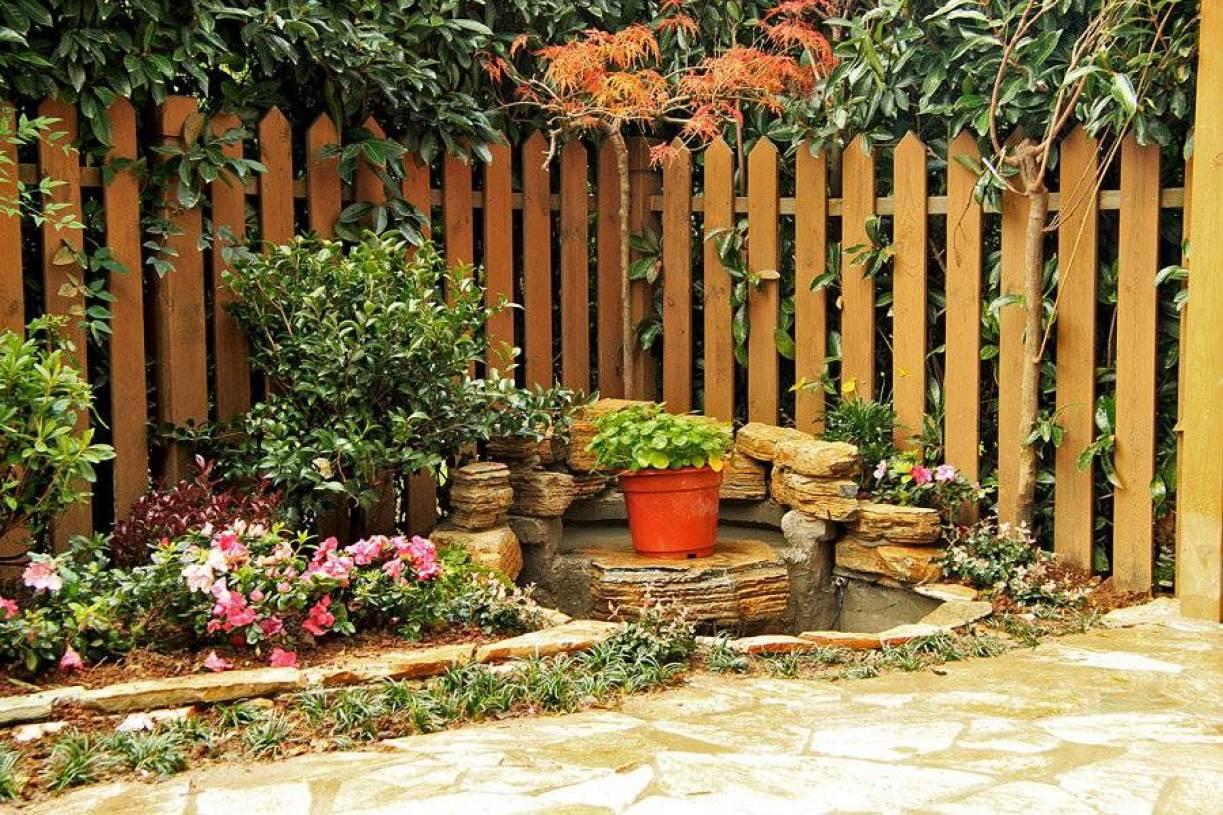 简约风格小花园装修图片图片