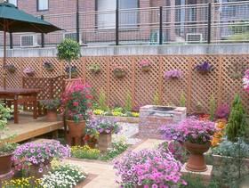 简约风格楼顶花园装修图片-简约风格阳台花架图片