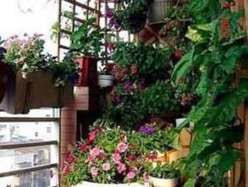 简约风格阳台小花园装修图片-简约风格阳台花架图片