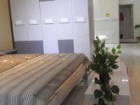 品质的升华 高档壁柜品牌——顶固高端范
