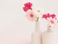 不过错过的物美价廉的家居装饰 家居插花