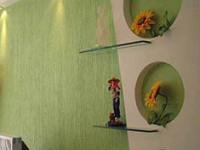 什么是液体墙纸,液体墙纸价格如何?