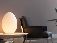 你的家里有这些别致的灯吗?