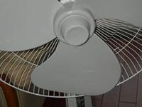 小心灰尘漫天飞,夏天如何干净地清洗电风扇?