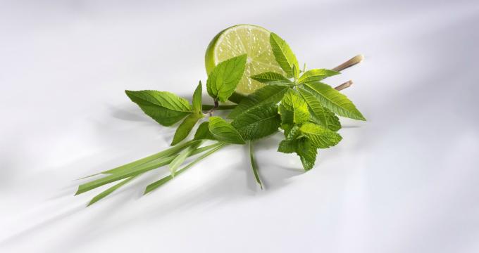 小小的一个盆栽也能改善卫生间风水,快来看