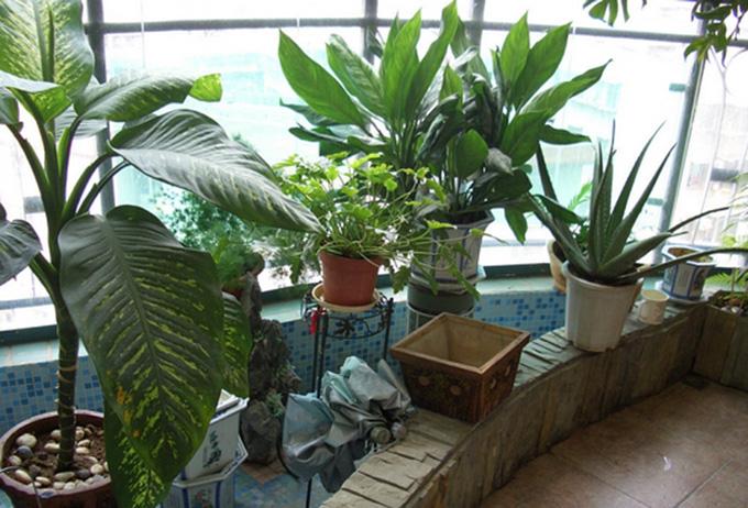 房屋装修防水施工之阳台防水怎么做
