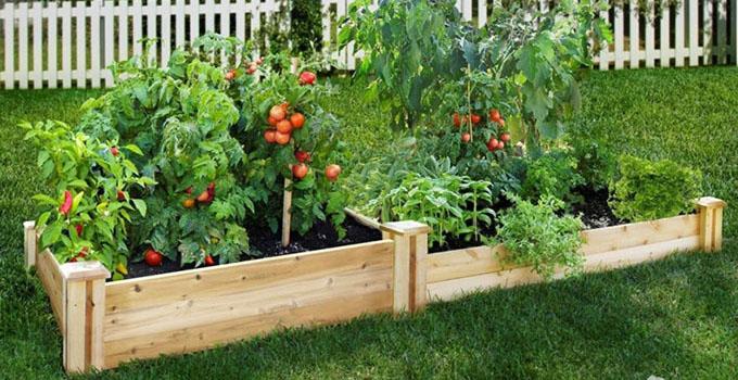 导语:节点花园,黄杨花坛,砖质铺地,木桩式围栏,所有这些形成了