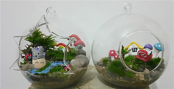 哇哦!要颜值更要实力:自制苔藓盆景