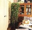原木质朴自然田园休闲客厅图片