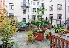 简约公寓花园实景