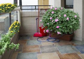 现代盆栽花园美图