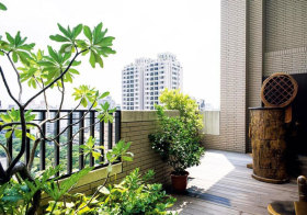 现代简洁花园欣赏