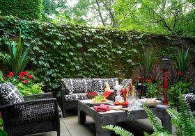 绿植现代花园美图